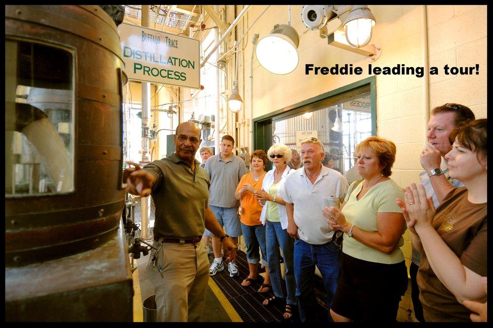 Freddie #2.jpg