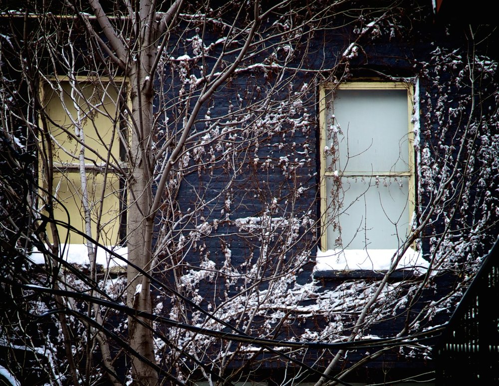 snow on the wall  1 of 1.jpg