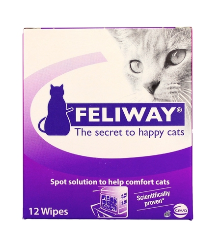 Use these pheromone wipes on the inside of the carrier and pet bed inside it!