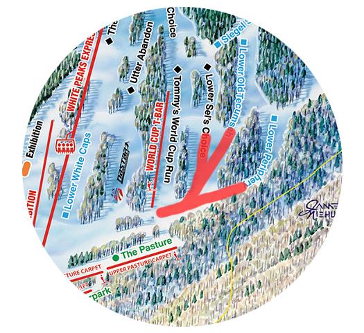 Trail_Map_Alpine_Course_Ski_Access.jpg