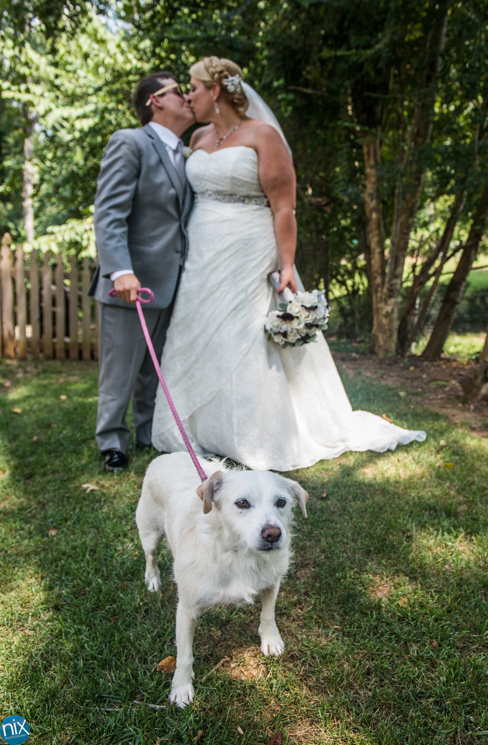 bride groom kiss dog.jpg