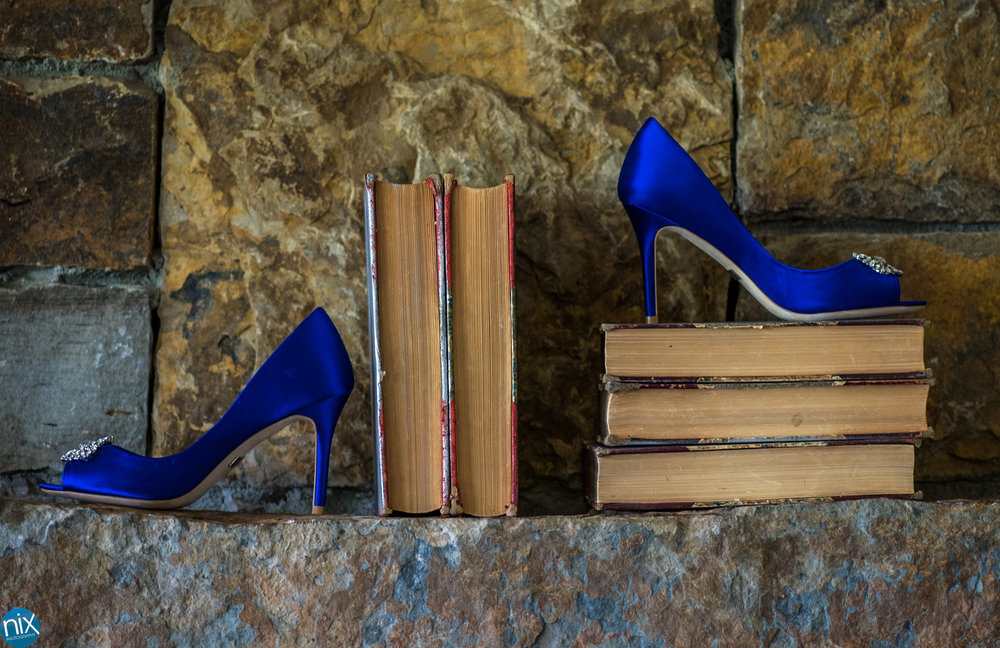 blue shoes books.jpg