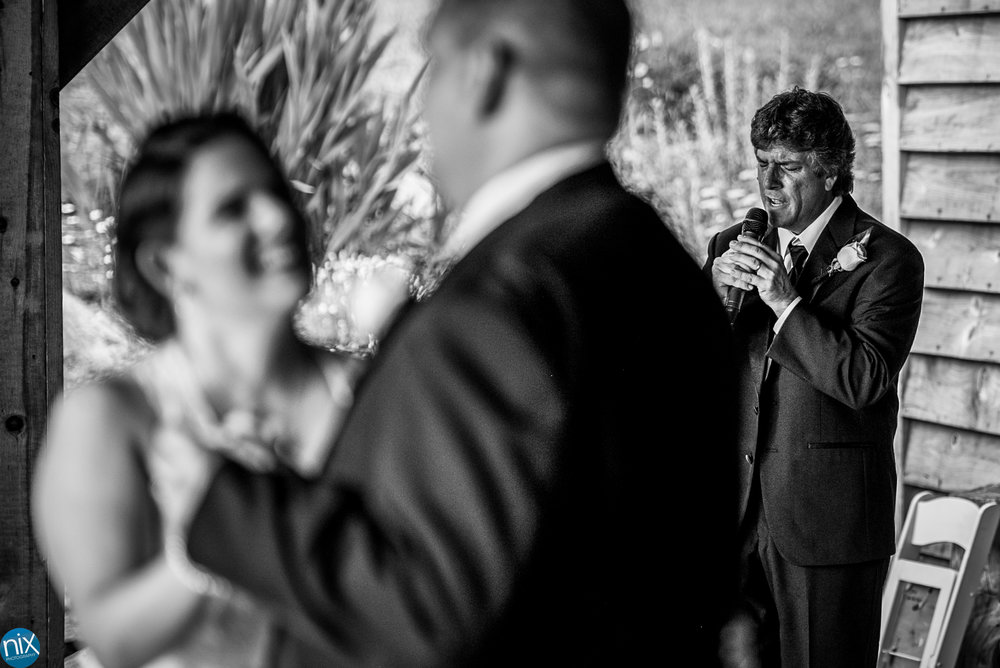 first dance father of the bride sings.jpg