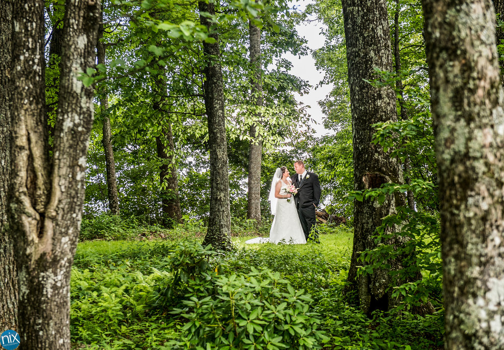 bride and groom in woods cabin ridge.jpg