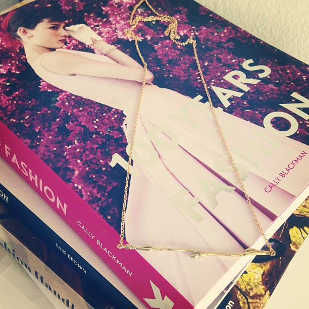 "The lovely book ""100 years of fashion"" and the popular necklace Björk"