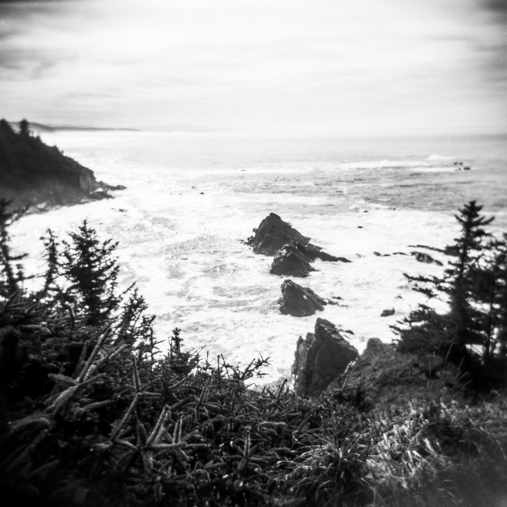 oregoncoastfilmphotography-13.jpg