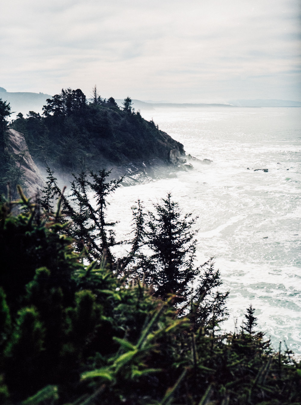 oregoncoastfilmphotography-46.jpg