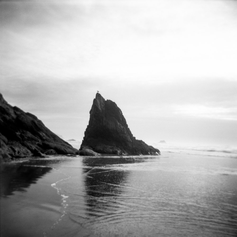 oregoncoastfilmholgaphotography-20.jpg