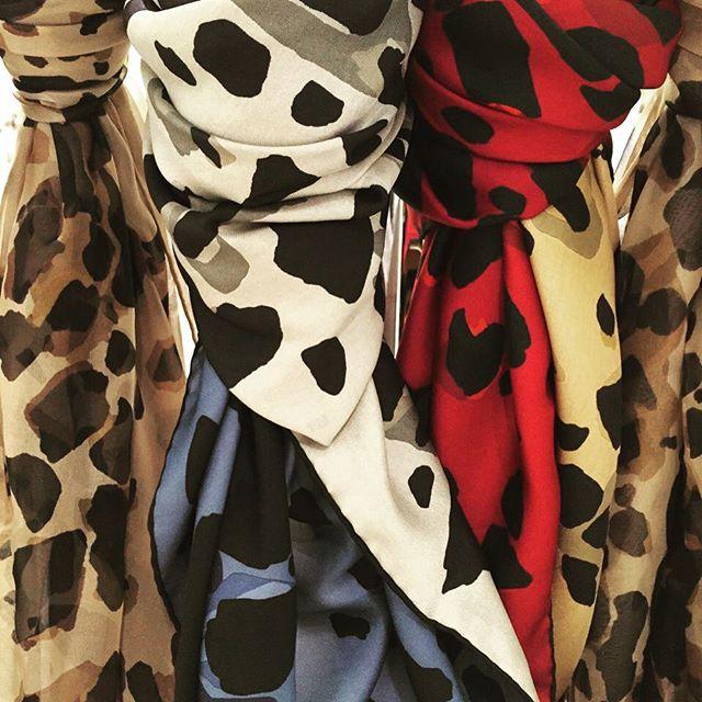 Burberry in the Jungle @robinhearddesign #inspiration #textile