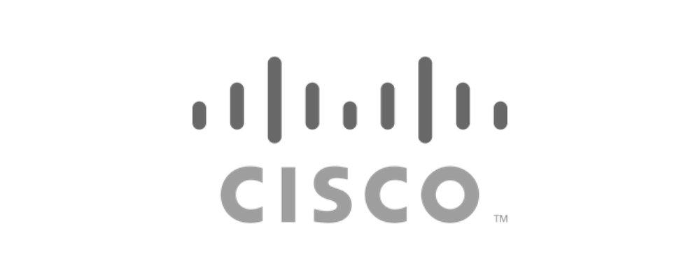 Cisco Grey 500 x 200-01.jpg