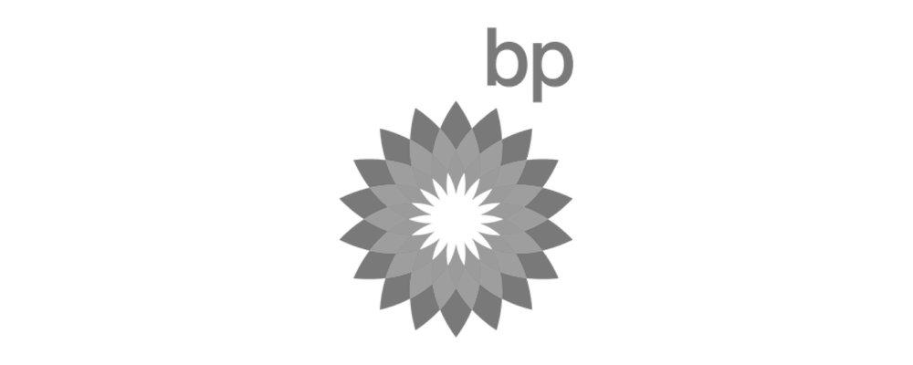 BP Grey 500 x 200-01.jpg