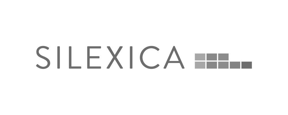 Silexica Grey 500 x 200-01.jpg