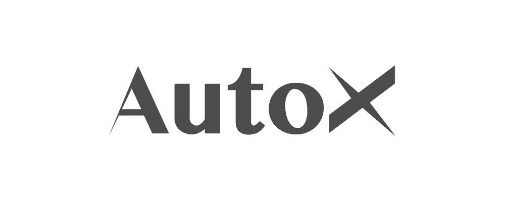 AutoX Grey 500 x 200-01.jpg