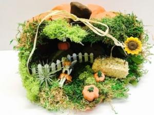 pumpkin fairy garden.jpg
