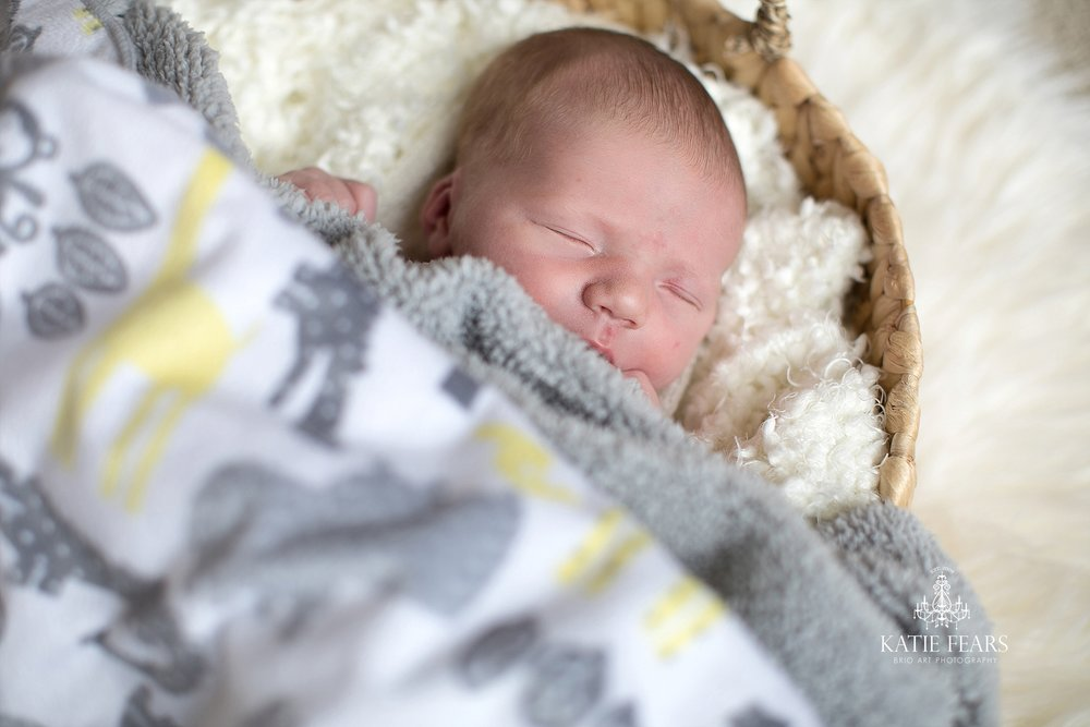 BrioArt_Everett-Newborn-097_WEB.jpg