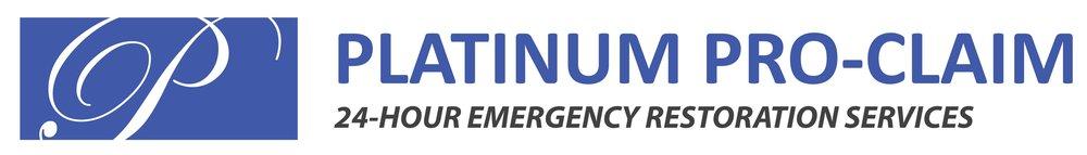 Logo - PLATINUM.jpg