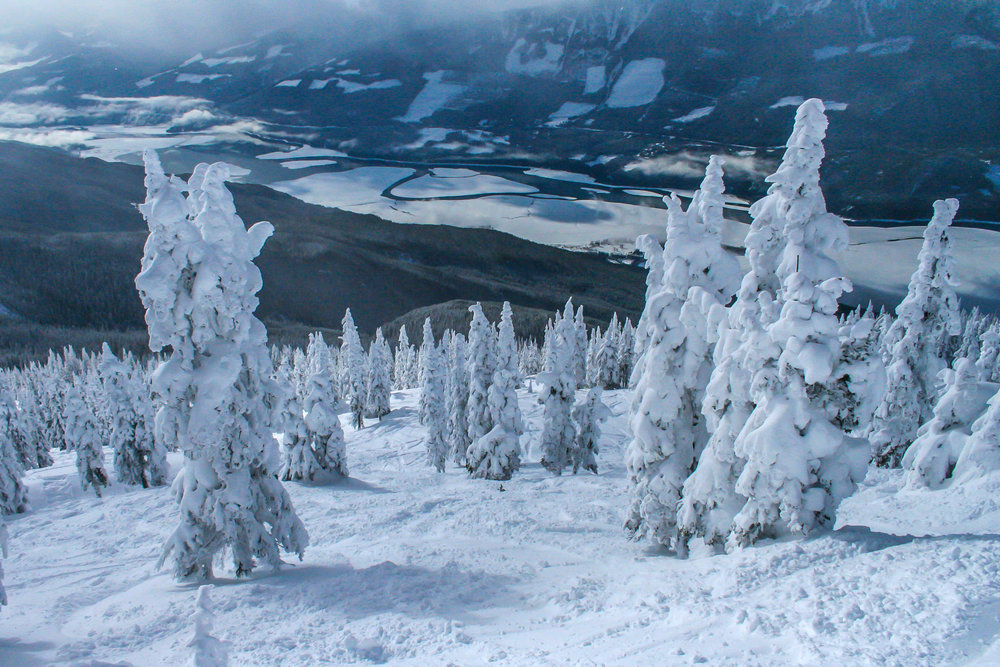 a day's skiing at spedtacular Mt Revelstoke...Noth Americas biggest vertical drop at  1713m (5620 ft)...the buried trees appear like snow ghosts...