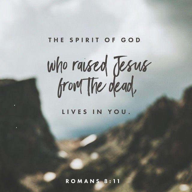 Bible verse.jpg