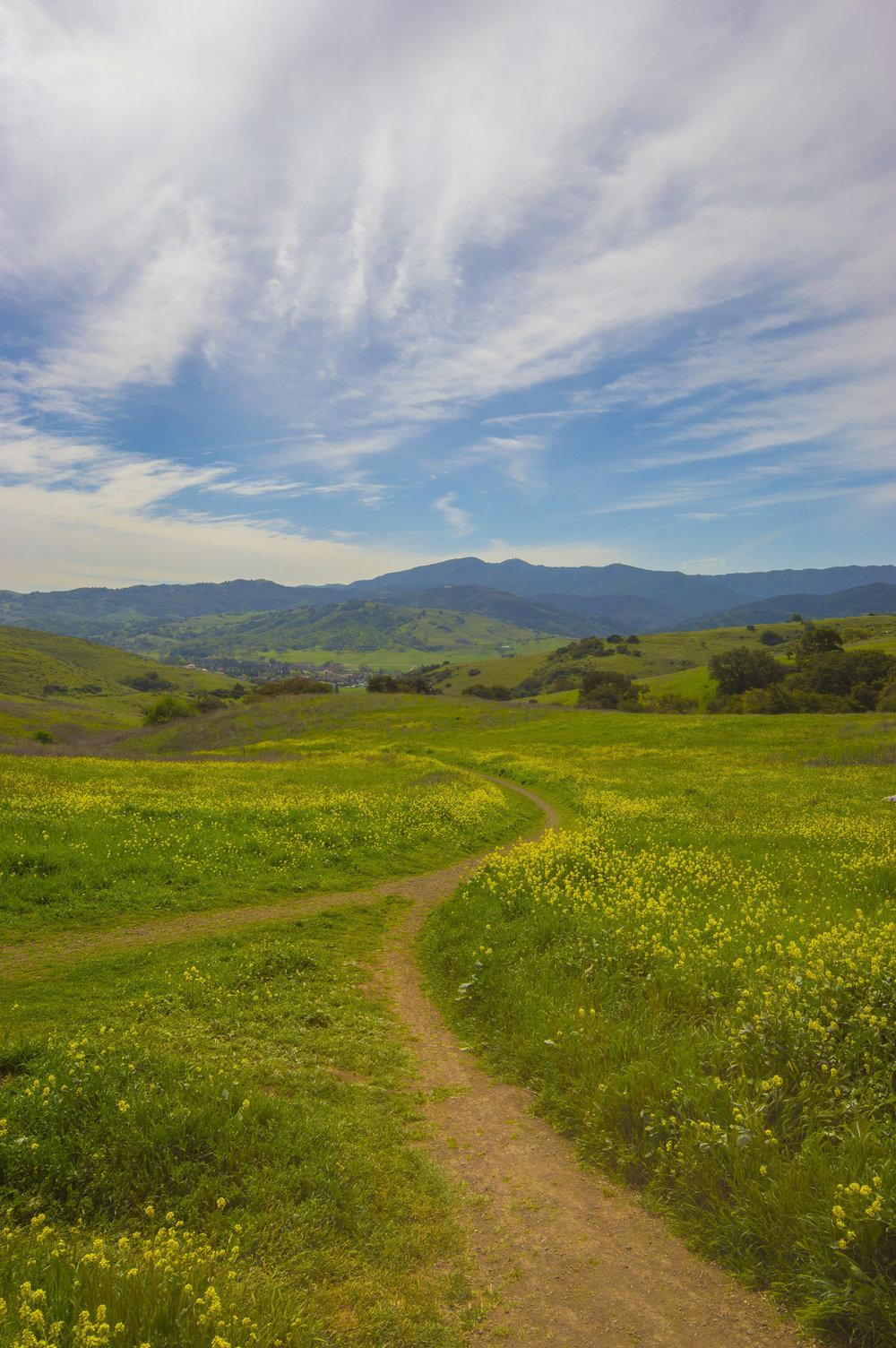 Santa Teresa County Park, San Jose, California