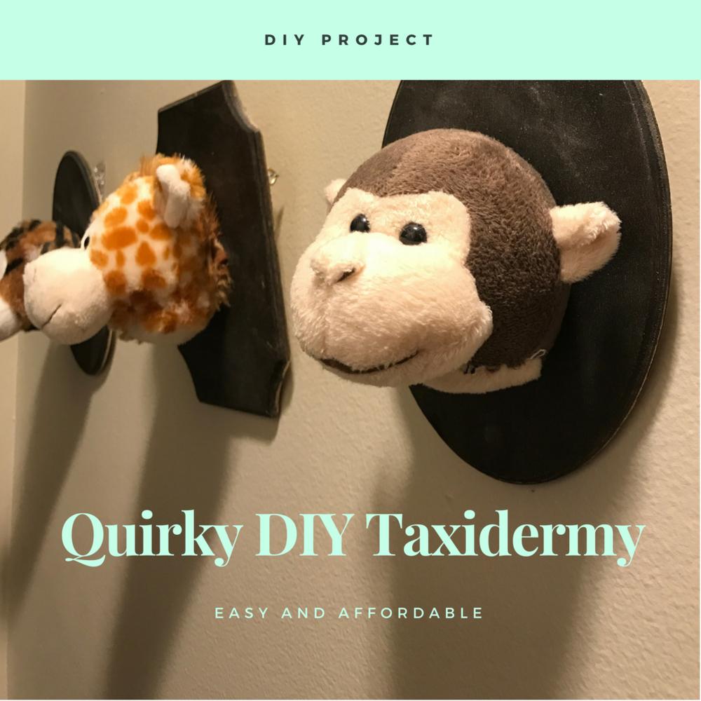 diy taxidermy stuffed animals everyday cait