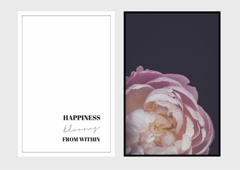 HAPPINES (3).jpg