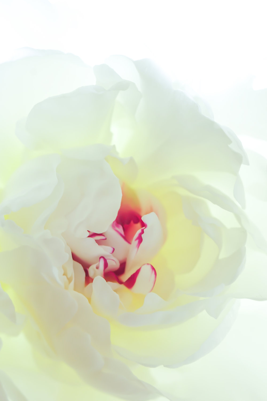 photographic-fine-art-print-by-reubenjames.jpeg