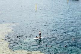 paddle-boarding-1210017__180.jpg
