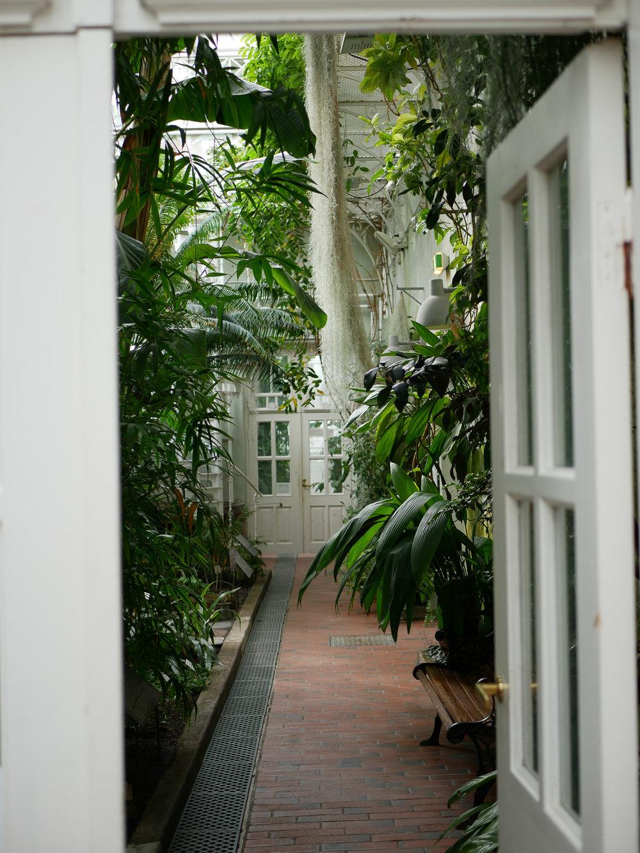 """Ibland när jag druckit för många glas skumpa brukar jag irritera min omgivning med citatet """"När gud stänger en dörr öppnar han ett fönster"""". Men så är det, en stängd dörr är ett öppet fönster mot något nytt. Den här dörren i botaniska öppnade upp till ytterligare ett vackert rum."""