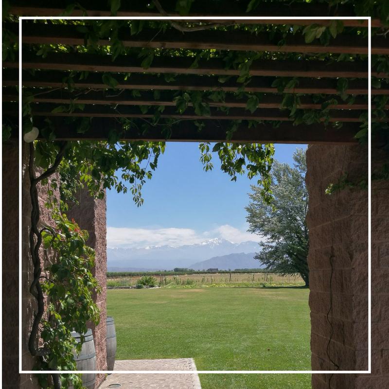 20 glas vin senare - Om en fantastisk wine tour i Mendoza.