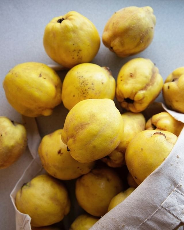Who else is counting down the days until quince season?? ⠀⠀⠀⠀⠀⠀⠀⠀⠀ ⠀⠀⠀⠀⠀⠀⠀⠀⠀ Cause I sure am... ⠀⠀⠀⠀⠀⠀⠀⠀⠀ ⠀⠀⠀⠀⠀⠀⠀⠀⠀ ⠀⠀⠀⠀⠀⠀⠀⠀⠀ .⠀⠀⠀⠀⠀⠀⠀⠀⠀ .⠀⠀⠀⠀⠀⠀⠀⠀⠀ .⠀⠀⠀⠀⠀⠀⠀⠀⠀ .⠀⠀⠀⠀⠀⠀⠀⠀⠀ .⠀⠀⠀⠀⠀⠀⠀⠀⠀ #porridge #oats #porridgeinmelbourne #melbourne #breakfastclub #healthy #breakfast #handrolledoats #seedandgrainporridge #seeds #grains #freshlyrolled #winter #feedfeed #farmersmarket #porridgetourofmelbs #lunchladymagazine #quince