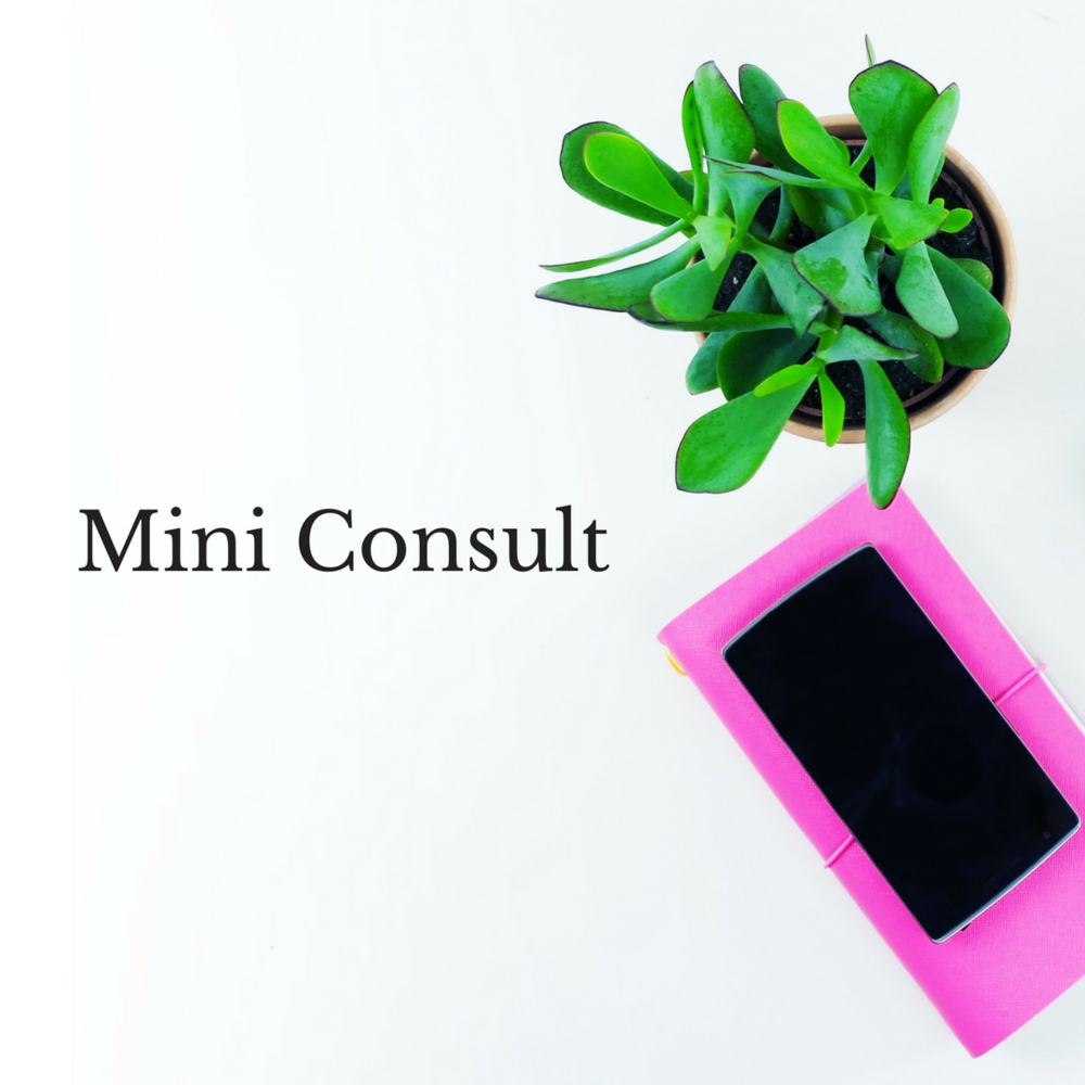Mini Consult.png