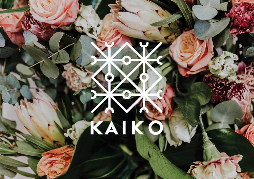 case_kaiko_branding.jpg