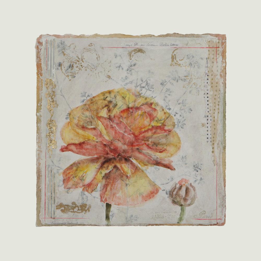 "Corolle de Begonia #1  12"" x 12"""