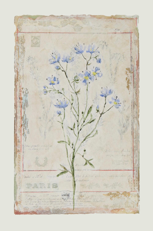 """Couleur de Parfum Fleur Bleue  19""""x12"""""""