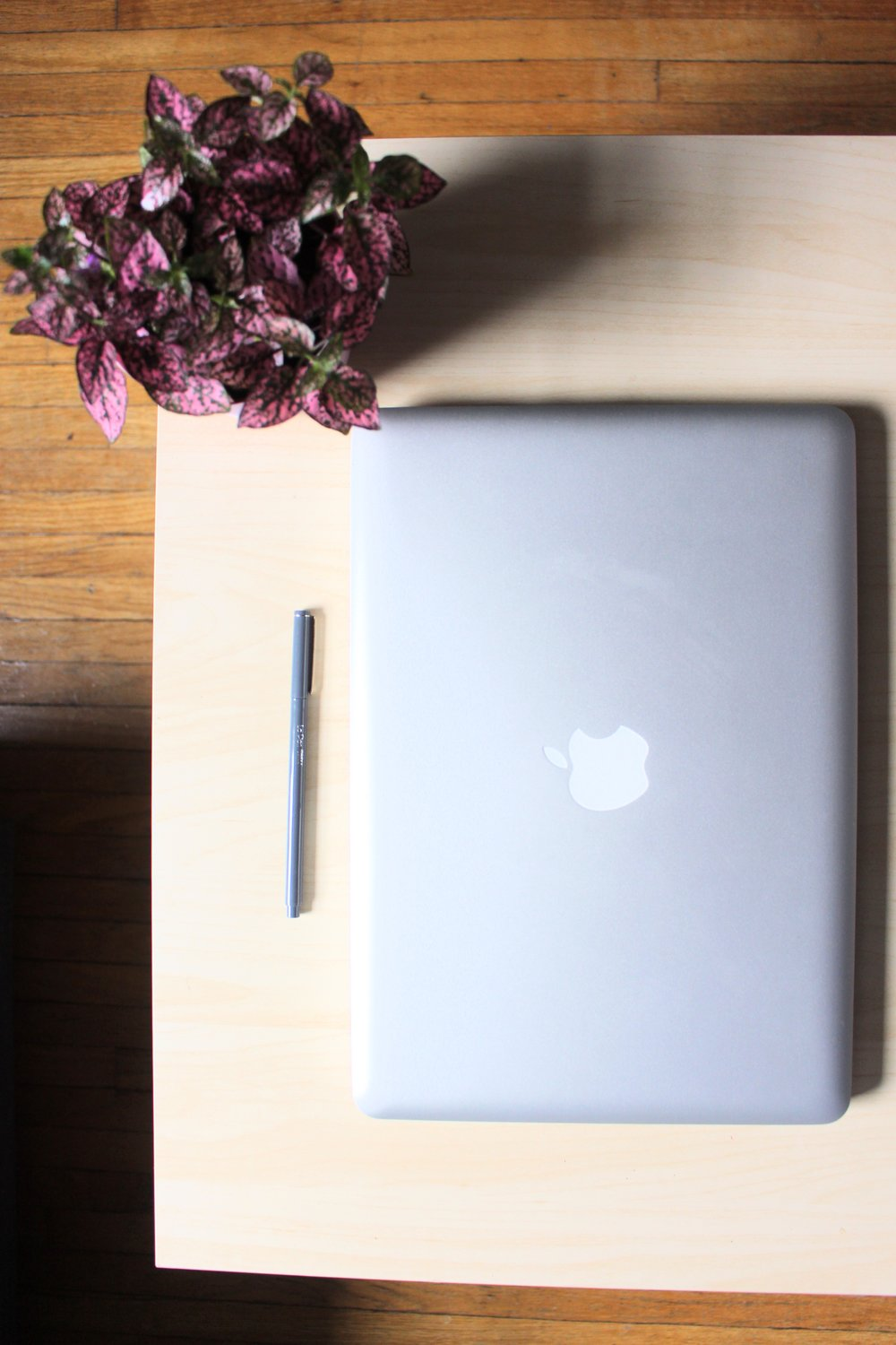 The Pros And Cons Of Working From Home As A Freelance Writer