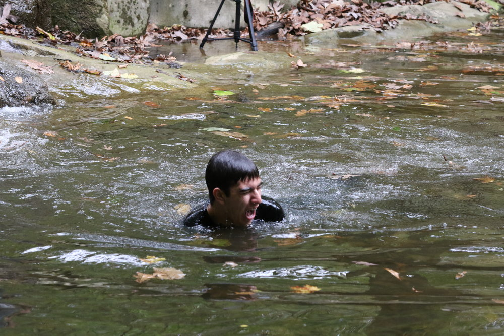 0069-dd2-photo-action-fall17.JPG