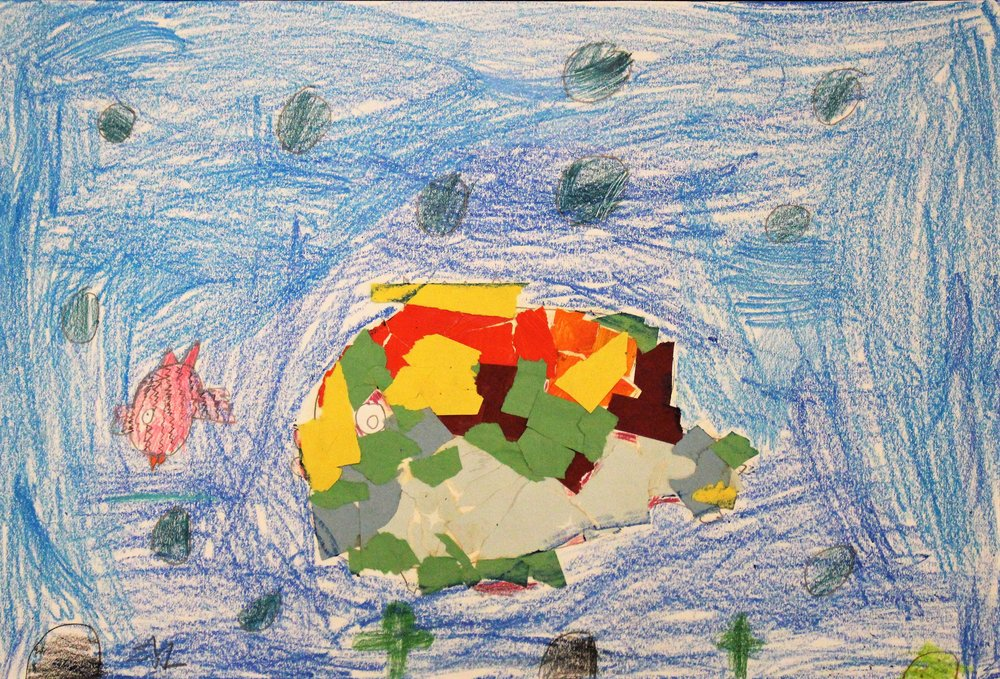 1st Grade: Sandy S. - Art inspired by the book, Sharkabet by Ray Troll