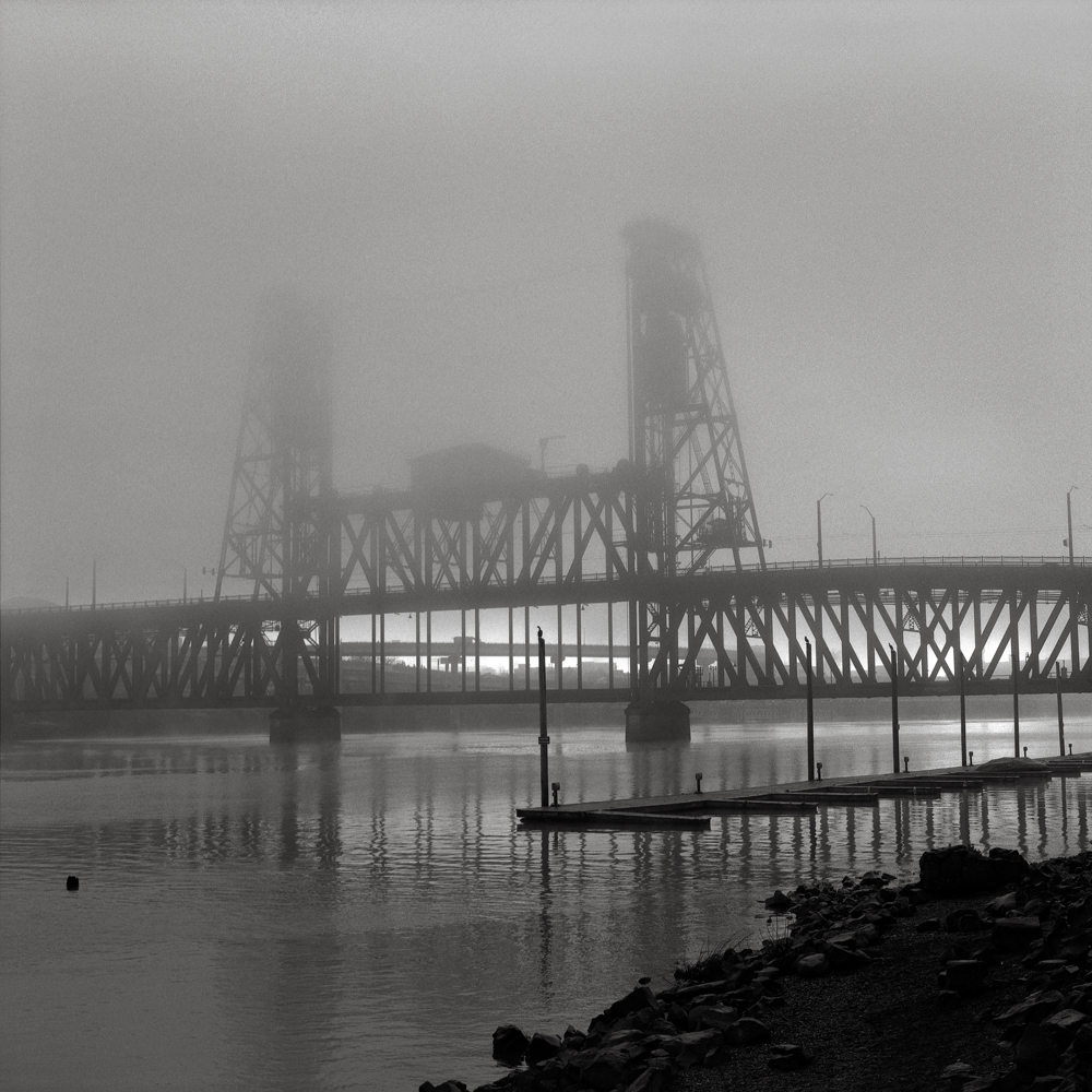 Steel Bridge with Cormorants