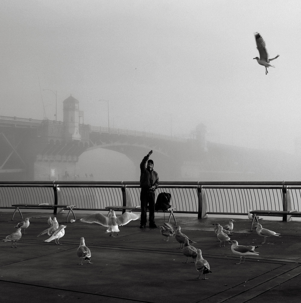 Man with Birds, Portland