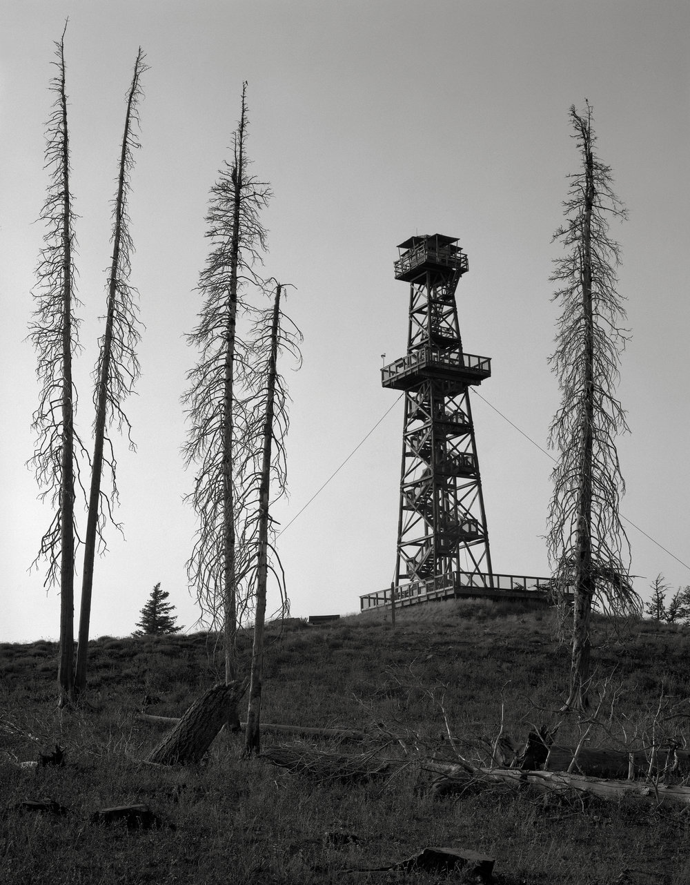 Fire Lookout with Burnt Trees, Hat Point, Oregon