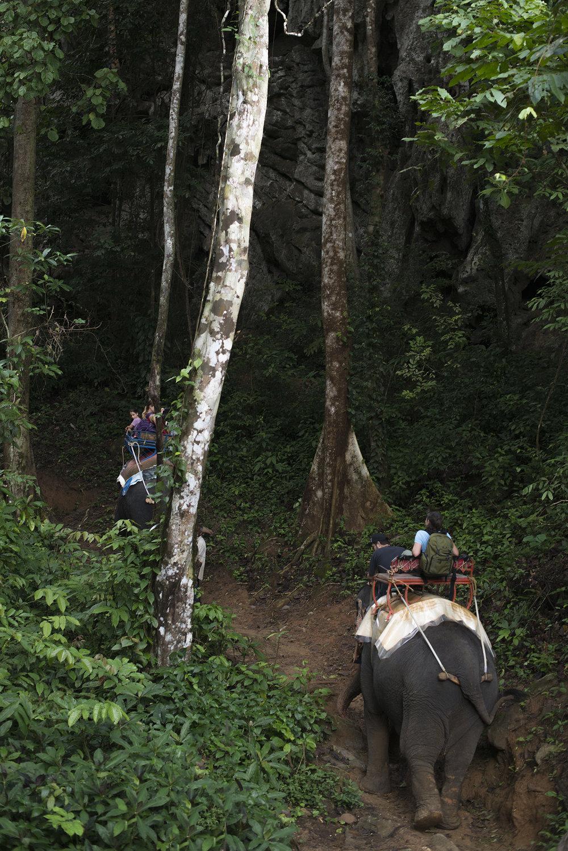 An elephant adventure in Baan Chang Khao Sok