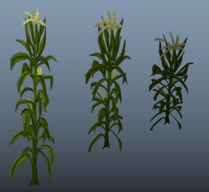 _Corn.png