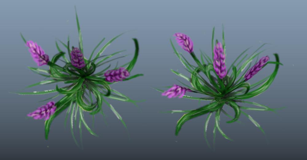 _Hyacinth.png