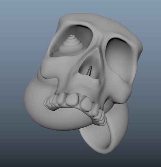 Skull Snail Shell!
