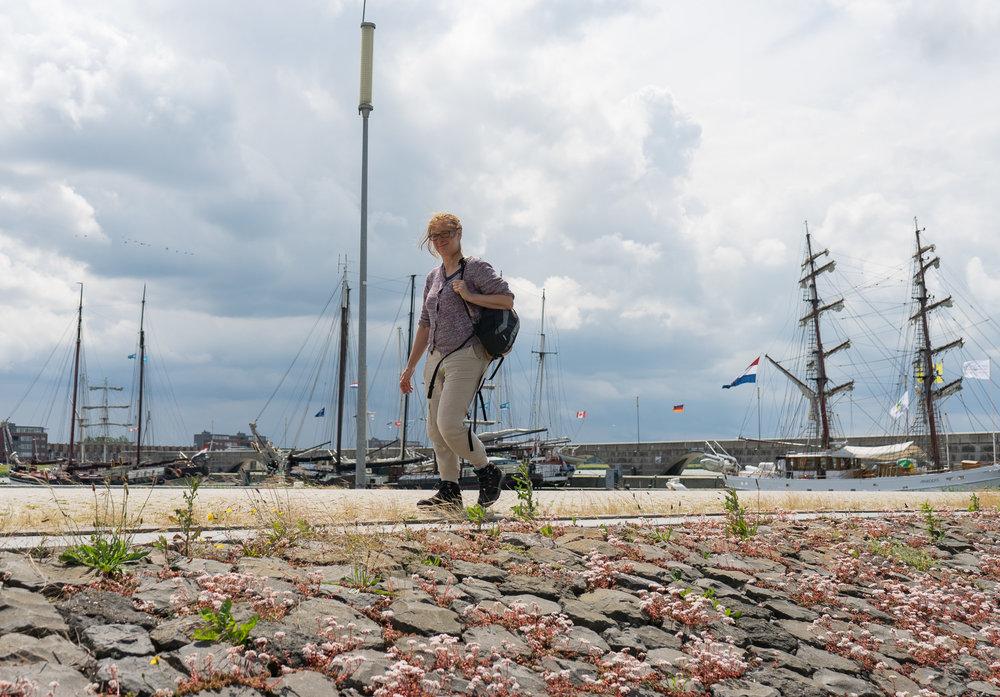 Dijk naar haventje van Lelystad