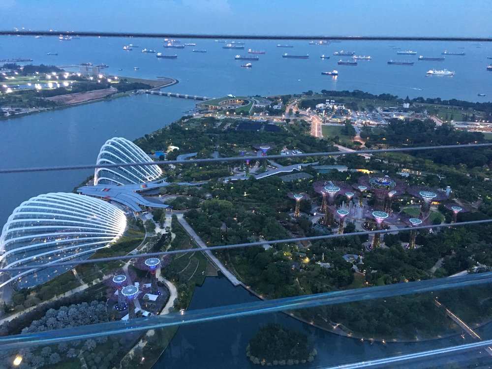 View over Gardens by the Bay. Notice all the ships in the port! The two big domes on the left are the Flower Dome and the Cloud Forest. The Supertree Grove is on the right.