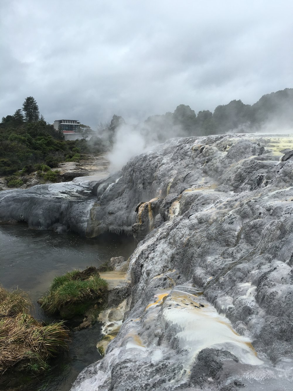 New Zealand: Auckland, Hot Water Beach, Waitomo, Rotorua