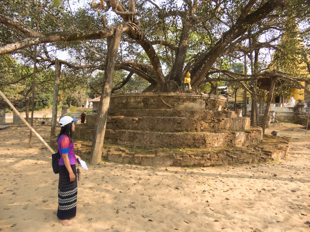 Here's Zin Zin checking out an old stone Buddhist structure. Notice her bare feet! You can't wear impure shoes on these holy grounds!