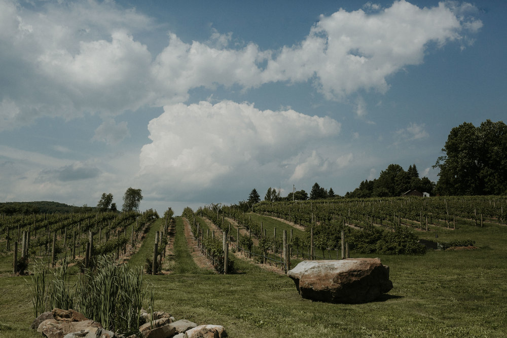 nostrano_vineyards_wedding_0029.JPG