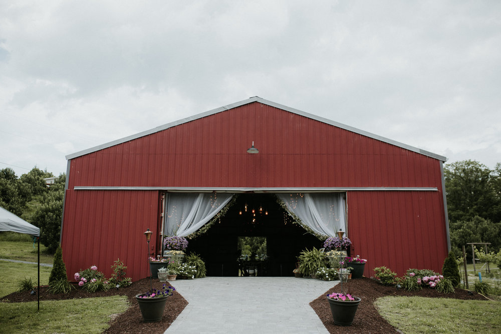 nostrano_vineyards_wedding_0035.JPG